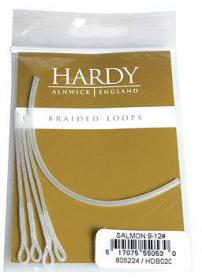 Hardy Braided Loops
