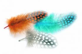 Veniard Guinea Fowl Plumage Hackles Mixed Sizes