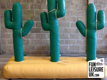 Cactus Hoopla Game Hire