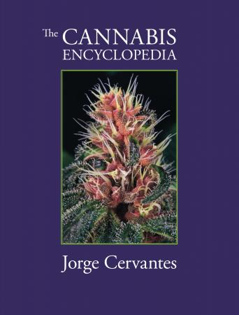 The Cannabis Encyclopedia by Jorge Cervantes Book