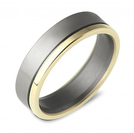 Contemporary Silver and Gold Band Ring (AMTI9)