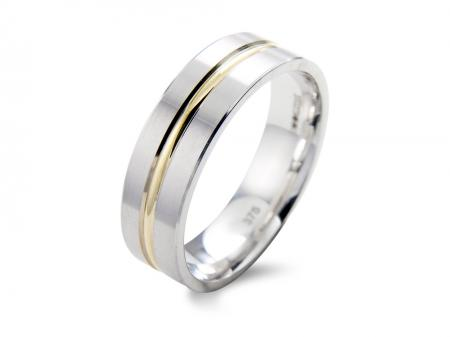 Contemporary Two Tone Wedding Band (AM1139)