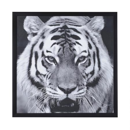 Large Wooden Framed 'Kato' The Tiger Picture