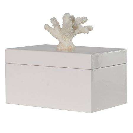Coral Designed Cream Storage Box