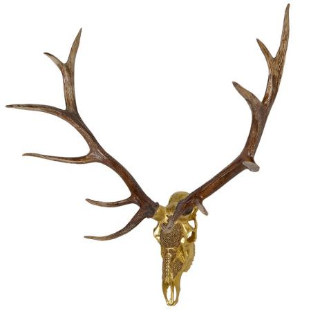 Extra Large Gold Deer Skull  with Natural Antlers Sculpture